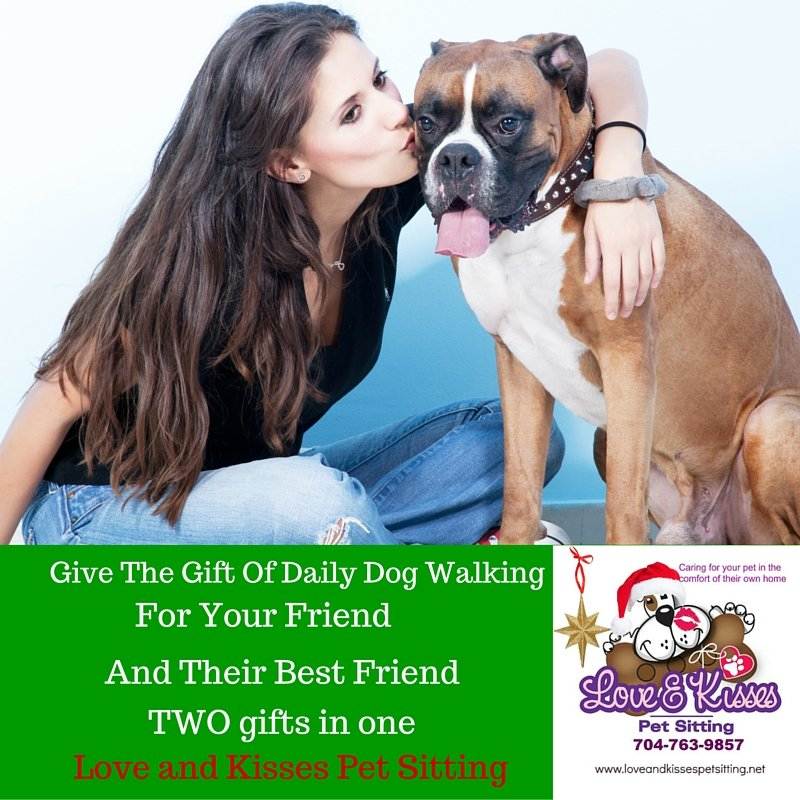 Give The Gift Of Daily Dog Walking Love And Kisses Pet