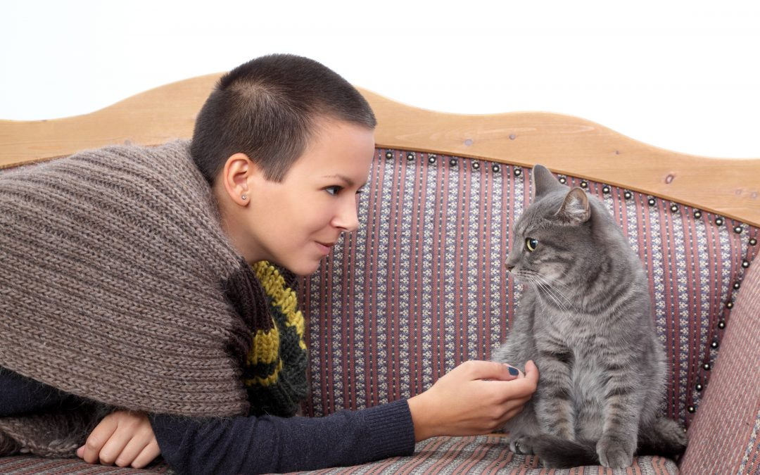10 Tips to Keep Your Home Clean With Pets
