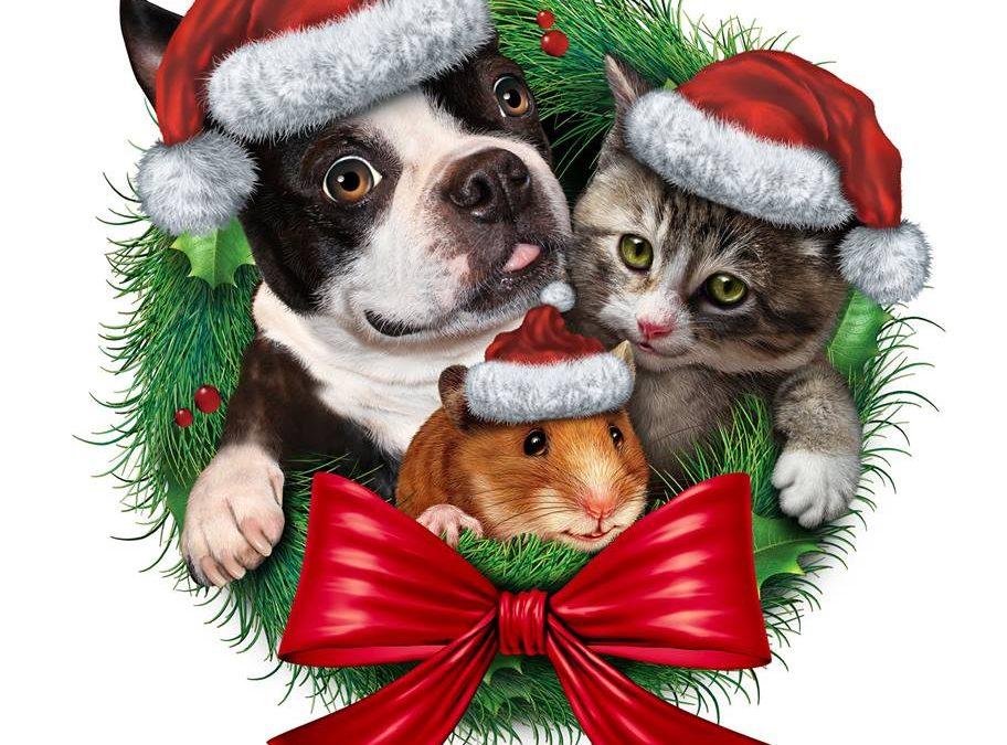 Best and Safest Christmas Dog Treats