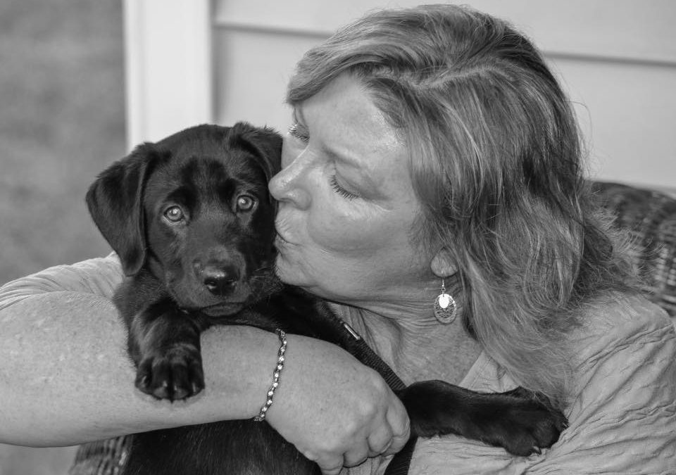 Waxhaw Dog Walker and Pet Sitter Professional and Insured