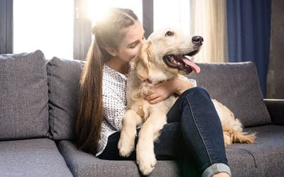 Coronavirus, What to Do With Your Pets While In Quarantine