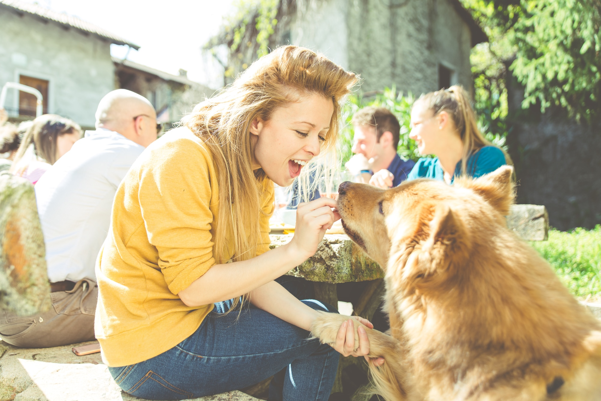 Summer Barbecue Safety For You And Your Dogs Love And