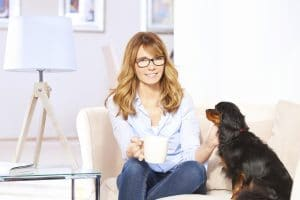 Making Your Home A Dog-Friendly Zone