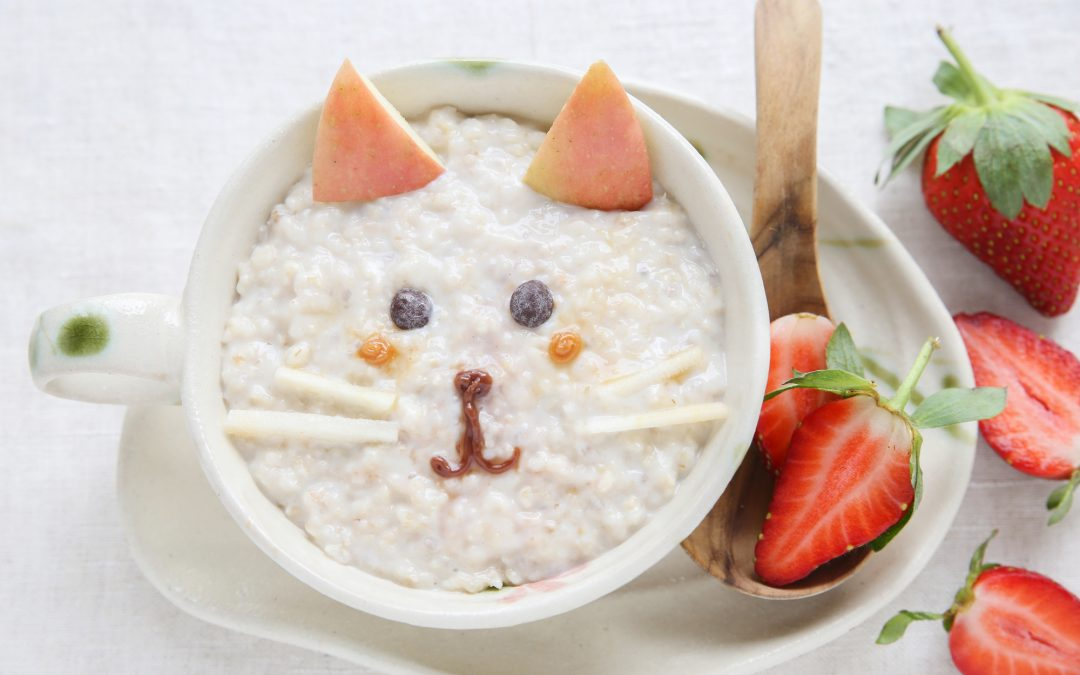 Can Cats Eat Oatmeal?