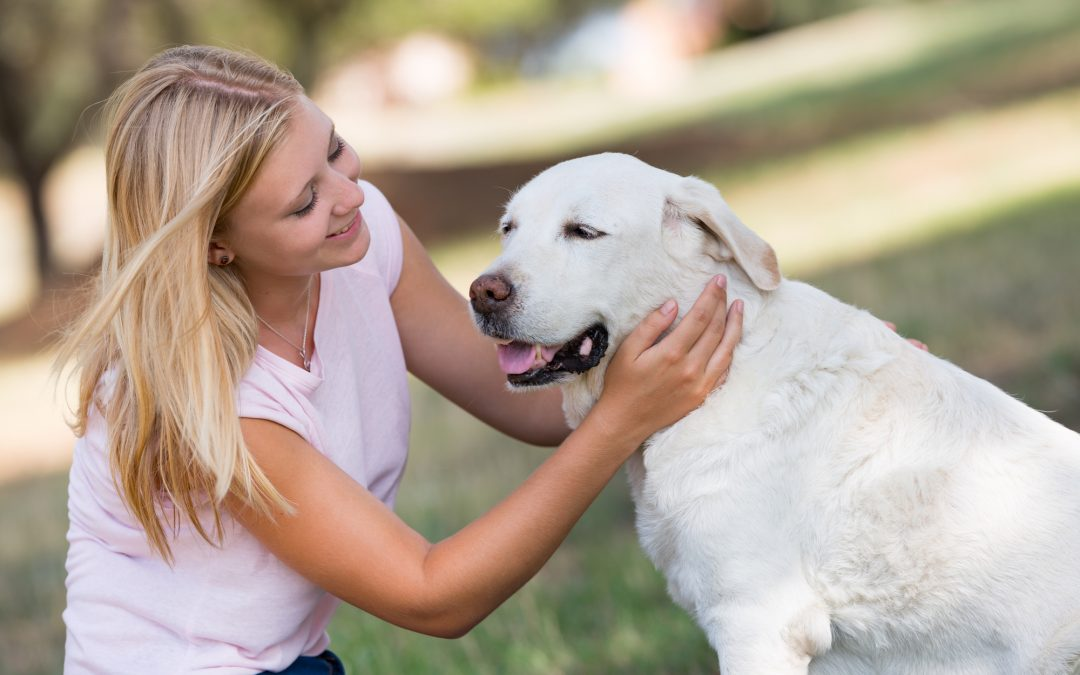 Why Hiring a Pet Sitter is Better Than Boarding