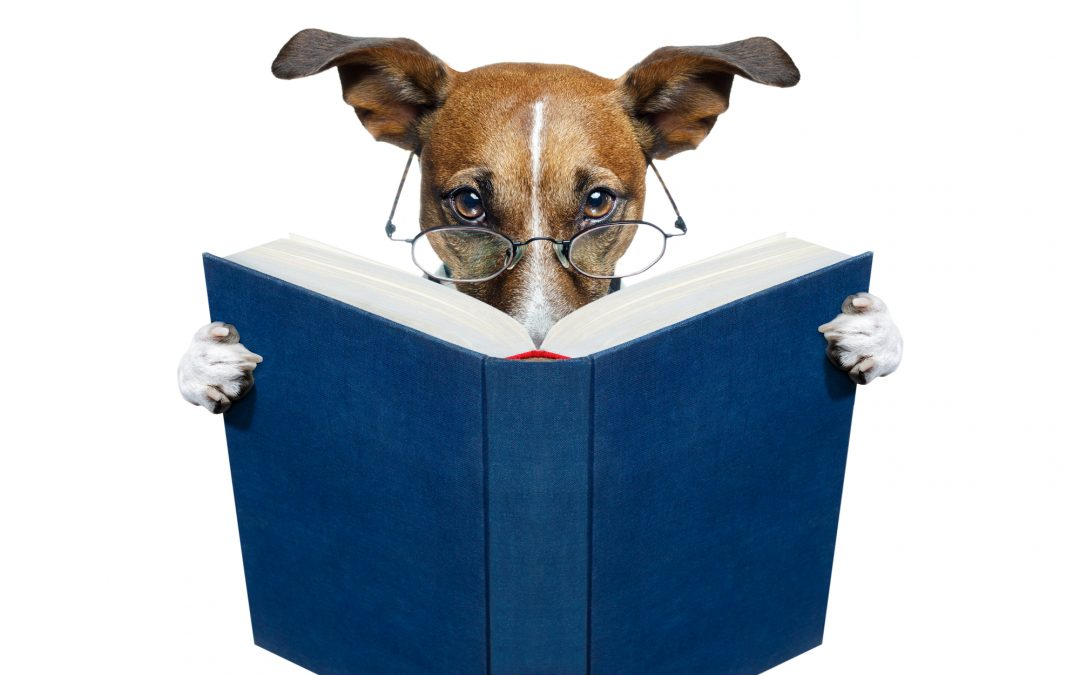 Books Dog Lovers Won't Be Able to Put Down