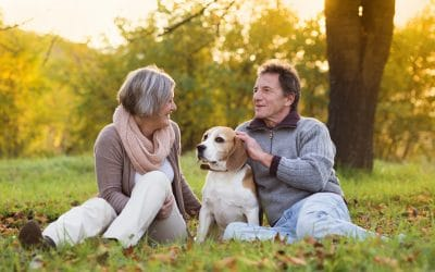 What Are the Benefits of Owning a Dog For Seniors?