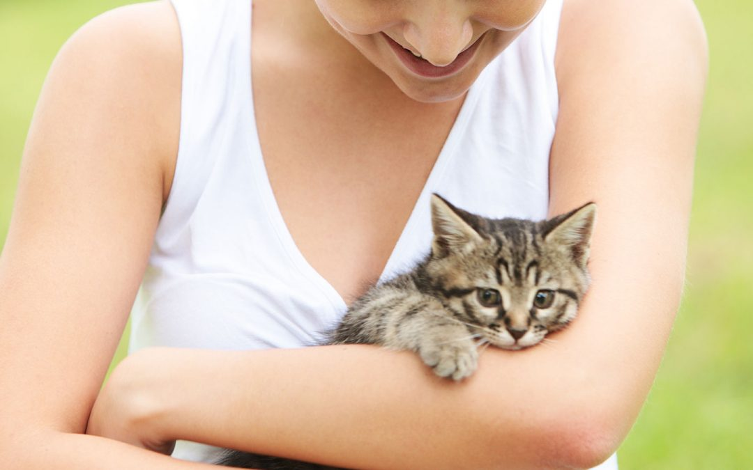 Everything You Should Know About the Meowing and Yowling of Your Cat