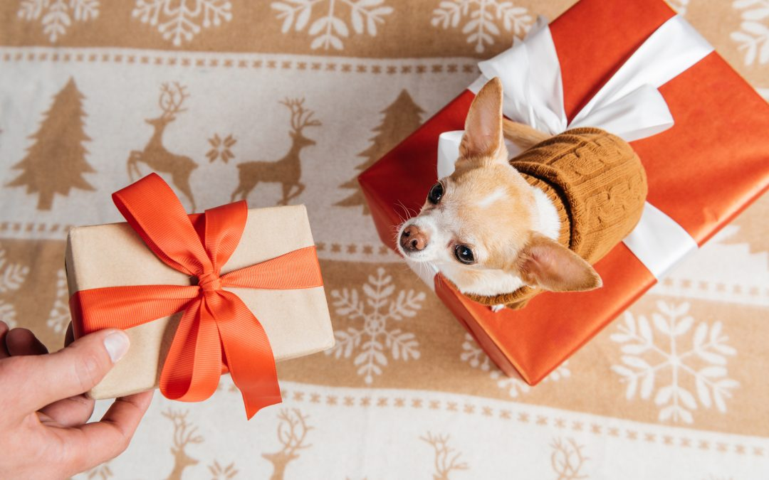 The Ultimate Gift Guide for Animal Lovers